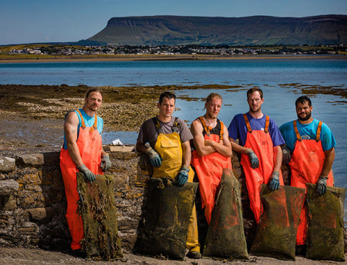 The Wild Atlantic Oyster Company.