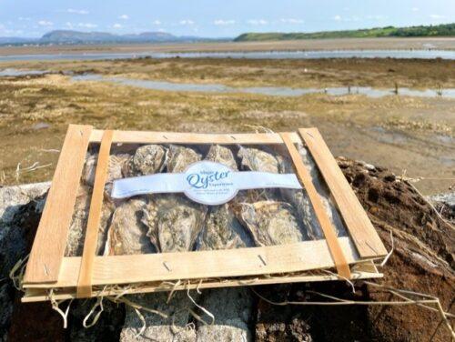 Sligo Oyster Experience Oyster Box
