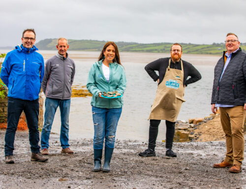 Sligo Oyster Farm Tour Opens on the Wild Atlantic Way