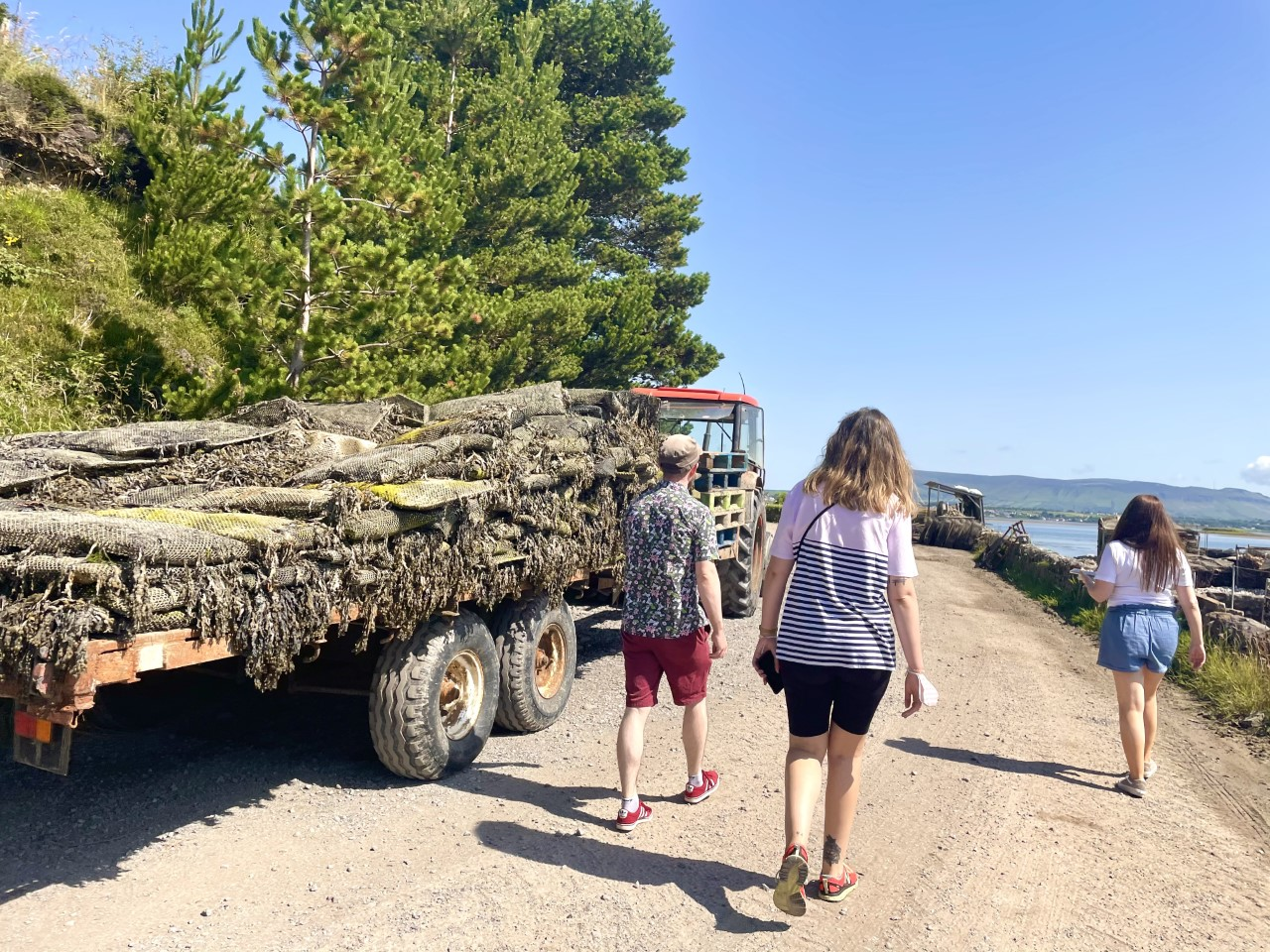 Tractor Oyster Farm Tour